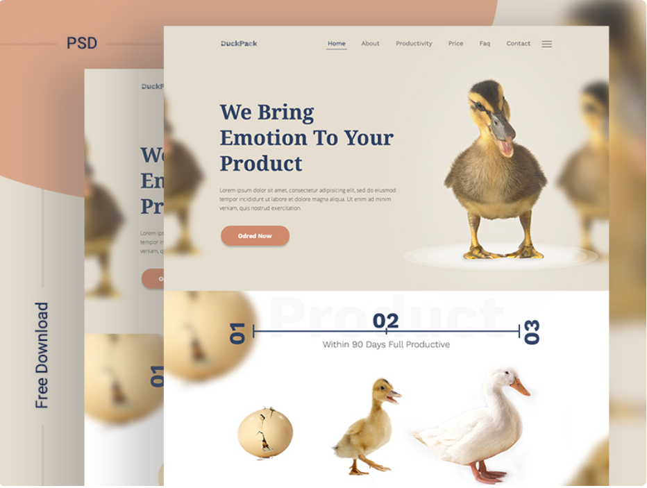 DuckPack Landing Page ll